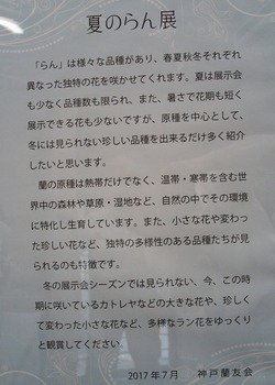 IMG_0701a.jpg